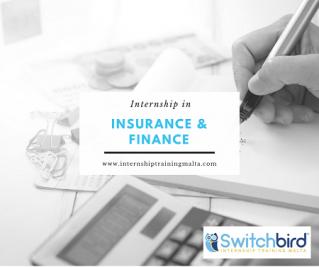 Insurance & Finance Internship
